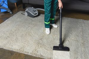 vacuum-cleaning-Bloomington IL bagged versus bagless